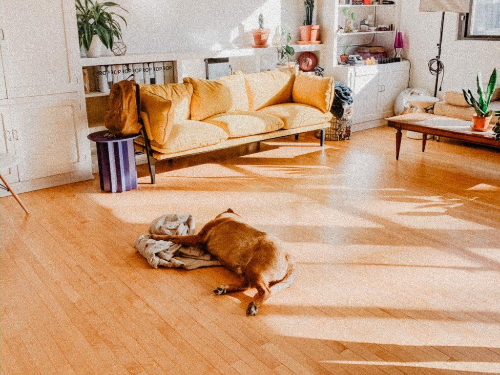 床暖房リフォームの費用や工事期間、種類を解説。耐用年数やメンテナンス方法は?