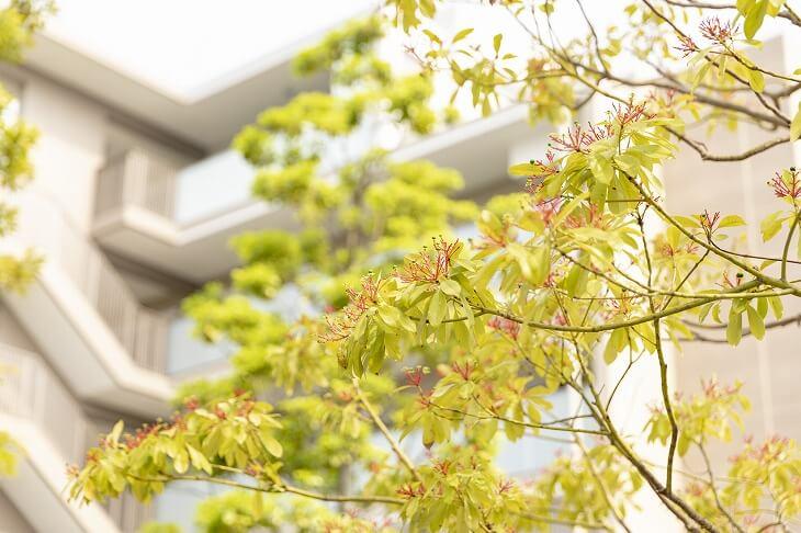 火災保険料は、建物の構造・周囲の環境によって値段が上下する。災害リスクが高いほど保険料も高額となる