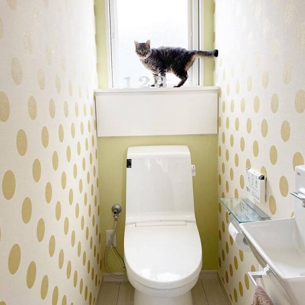 トイレをナチュラルな北欧風のデザインにする場合は、壁の一面にアクセントクロスを取り入れるのがおすすめです。淡いイエローやブルーなどを選ぶと、圧迫感の少ないおしゃれな空間に仕上がります。壁紙だけでなく、トイレマットやトイレットペーパーホルダーなどもナチュラルなカラーのものにすると、統一感が生まれてよりおしゃれな印象になります。