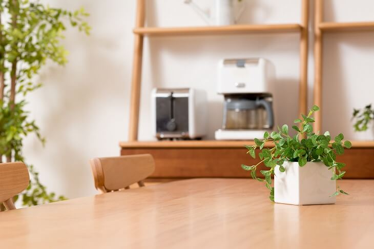 小さな観葉植物をテーブルに置くだけでもアクセントに
