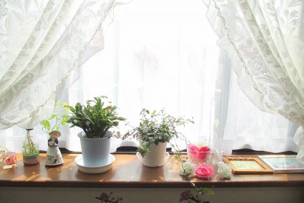 出窓をおしゃれに飾るぴったりのインテリアを紹介