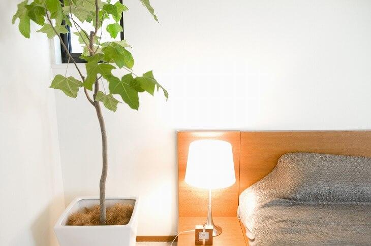 観葉植物には、グリーンの視覚的な癒しとともに、空気を浄化させる効果が。寝室には是非取り入れたいアイテム