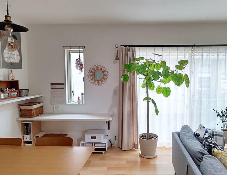 木目やホワイトの部屋は明るい雰囲気を生む